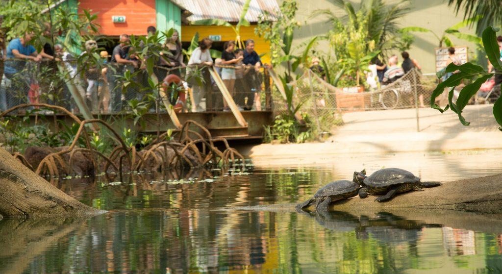 Schoolreis Burgers' Zoo
