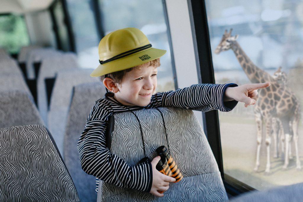 Schoolreis Beekse Bergen Safari